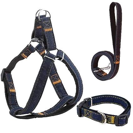 Amazon.com : DELCARINO Dog Leash Harness Collar Adjustable&Durable