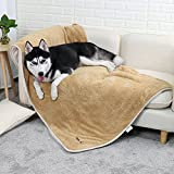 PAWZ Road Large Dog Blanket Fluffy Skin-friendly and Warm,Double-Sided,No Shedding Blanket for large and Medium Dogs and Cats-59''X39'' Light Brown