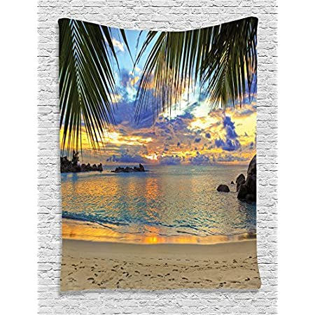 61L0hgJy5SL._SS450_ Beach Tapestries and Coastal Tapestries
