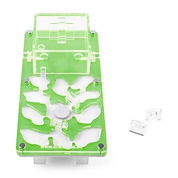 Anthouse.es Hormiguero Acrilico NaturColor 20x10x1cms Seta (con Hormigas Gratis) (Verde): Amazon.es: Juguetes y juegos