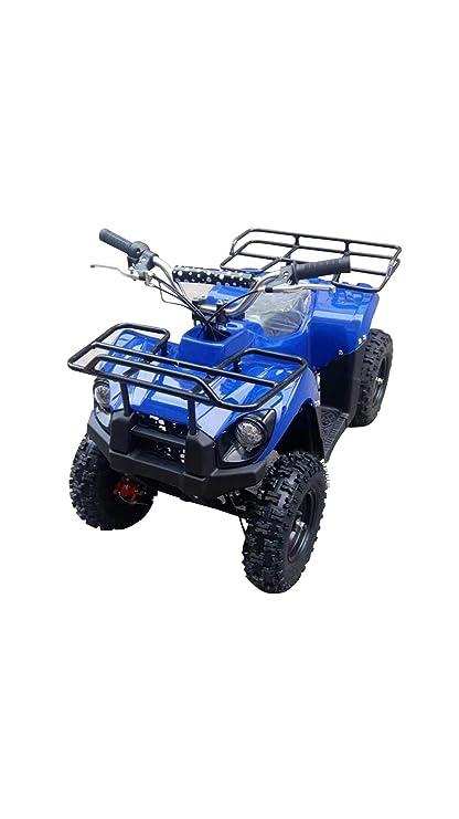 Vehículos de playa con tracción en las cuatro ruedas,equipos de arranque lento,vehículos