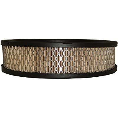Luber-finer AF216 Heavy Duty Air Filter: Automotive