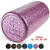Cheap High Density Muscle Foam Rollers by Day 1 Fitness – Sports Massage Rollers for Stretching, Physical Therapy, Deep Tissue and Myofascial Release – For Exercise and Pain Relief – Solid Purple, 12″