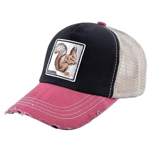 Caingmo - Gorra de béisbol Unisex de 11 Estilos, de algodón ...