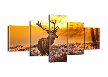 STAG DEER SUNRISE SPLIT CANVAS PRINT PICTURE WALL ART HOME DECORE FREE DELIVERY