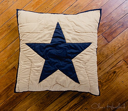 Olivia's Heartland Black and Tan Quilted Star Euro Sham ()
