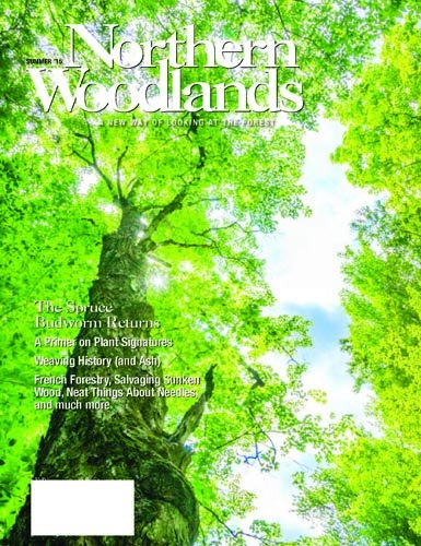 More Details about Northern Woodlands Magazine