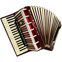 Weltmeister Amigo 96 Bass, 16 Switch, Case, made in Germany, Piano Accordion 879, Beautiful and rich sound