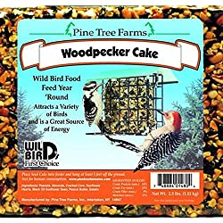 2.5 Pounds, Woodpecker Seed Cake