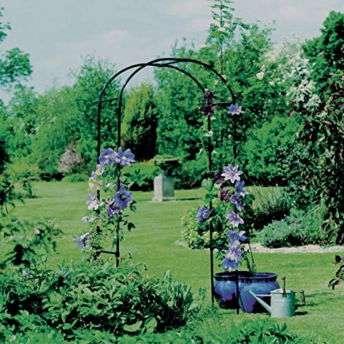 Black Metal Garden Arches Standing Rounded Rustic Circular Top Backyard Sturdy Outdoor Decorative, Steel