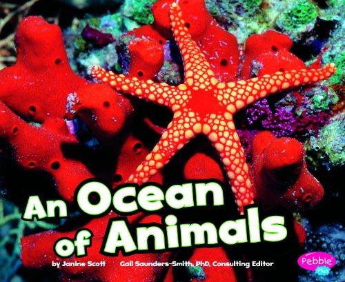 An Ocean of Animals (Habitats around the World)