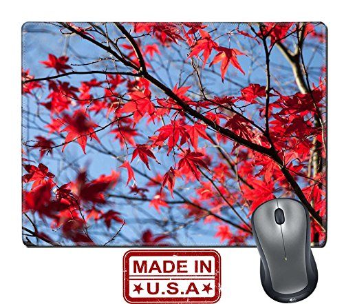 "Maple Leaf Promotions (Liili Natural Rubber Mouse Pad/Mat with Stitched Edges 9.8"" x 7.9"" Colorful maple leaves autumn for background Image ID 23405965)"