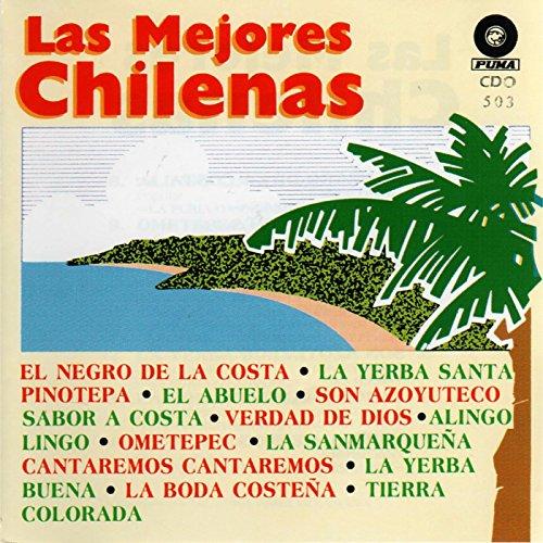 Dating chilenas costenas