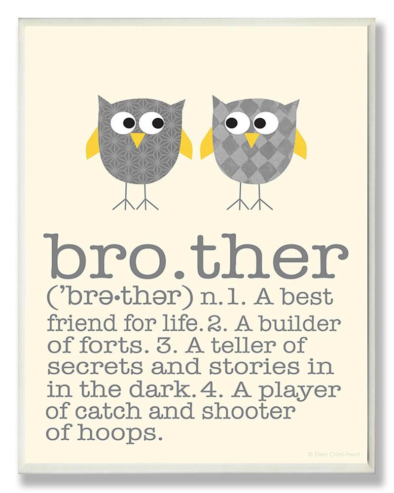 The Kids Room by Stupell Definition of Brother with Two Grey Owls Rectangle Wall Plaque, 11 x 0.5 x 15, Proudly Made in USA by The Kids Room by Stupell