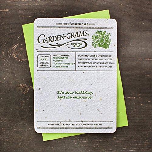 Bloomin Garden Grams Seed Paper Greeting Cards - Veggie Seed {3 Pack} ()