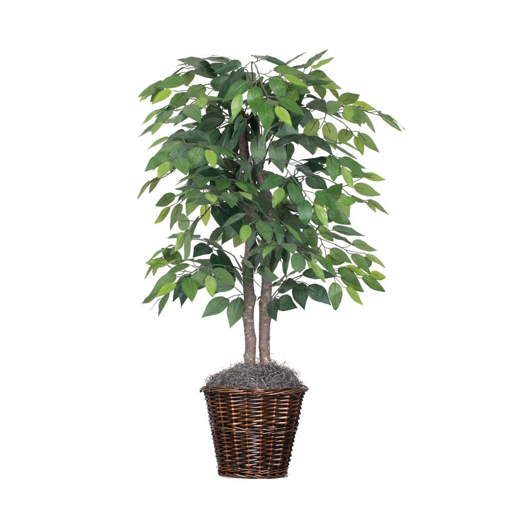 Vickerman 4-Feet Artificial Natural Ficus Bush with Dark Green Leaves in Decorative Rattan Basket by Vickerman