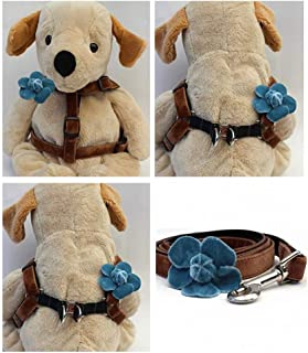 """product image for Diva-Dog 'Camellia Blue' Custom 5/8"""" Wide Dog Velvet Step-in Harness with Plain or Engraved Buckle, Matching Leash Available - Teacup, XS/S"""