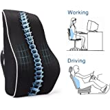 PROMIC Memory Foam Lumbar Support Back Cushion, Ergonomic Lumbar Pillow Relieves Sciatica Pain - 3D Ventilative Mesh Lumbar Support Pillow for Office Desk Chair Car Seat Couch and Sofa (Black)