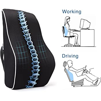 Amazon.com: Go Lumbar Support Mesh Back Cushion for Car Seat ...