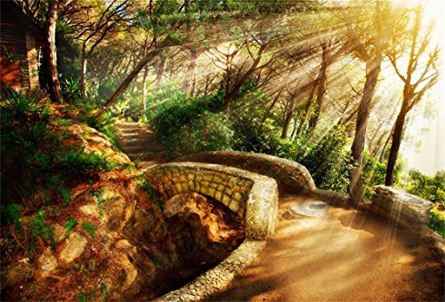 CSFOTO 7x5ft Background for Sunshine Forest Photography Backdrop Stone Bridge Steps Scenic Spot Outdoors Nature Leisurely Holiday Vacation Tourist Resort Photo Studio Props Polyester (Village Of Park Forest Halloween)