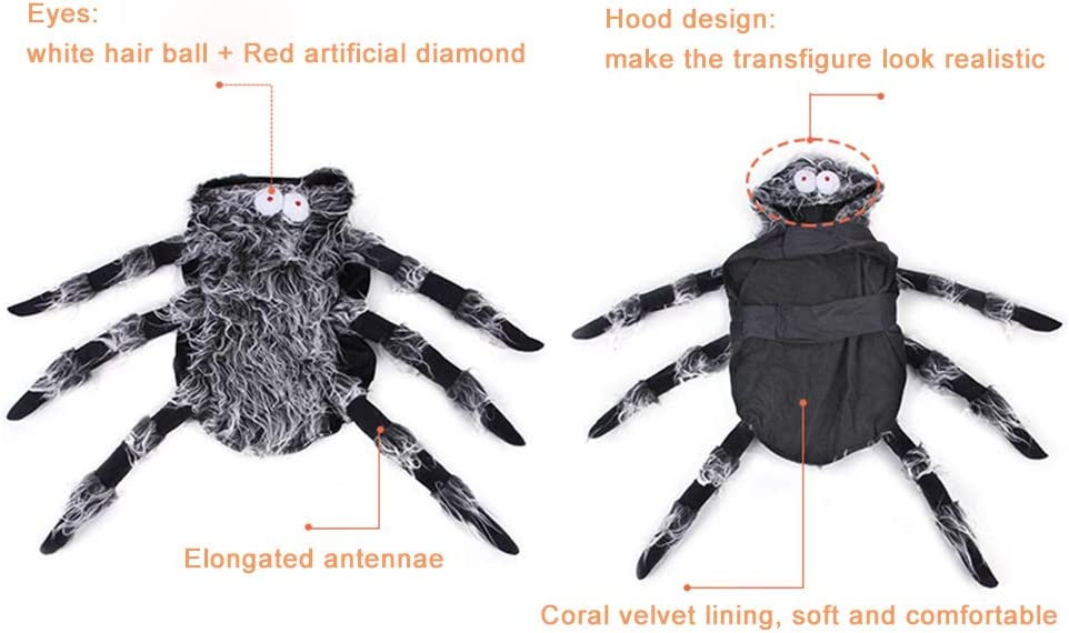 wanhonghui Disfraz de araña Gigante,Halloween Mascotas ...