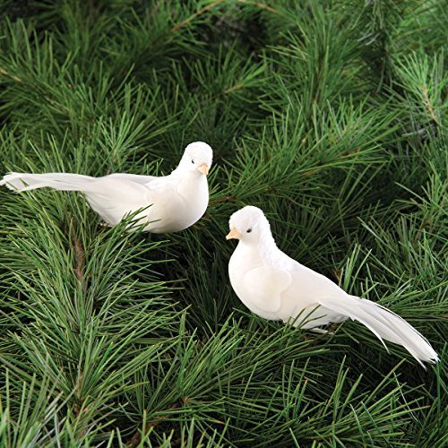 Dove Clip Ornament, Assorted of 2 -