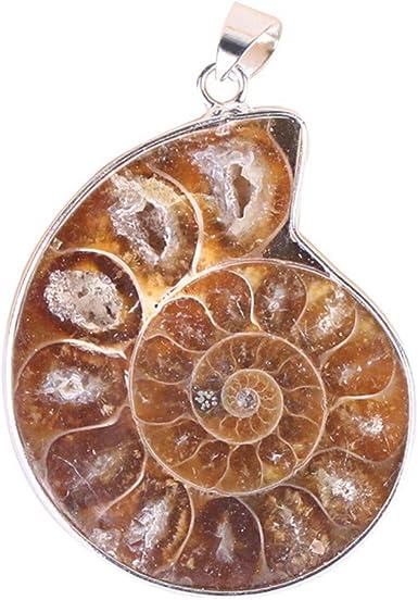 Ammonite Fossil Design Pendant Keychain