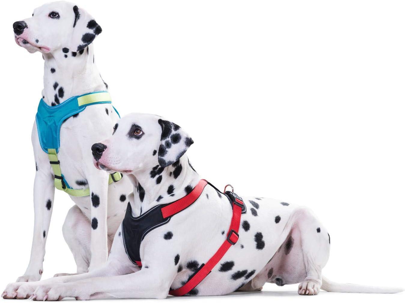 f/ür Sport und Freizeit aus Nylon HUNTER Neopren Geschirr f/ür Hunde mit weichem Neopren gepolstert