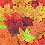 CEWOR-1000pcs-Assorted-Artificial-Maple-Leaves-Mixed-Fall-Colored-Wedding-Home-Thanks-Giving-Events-Outdoor-Decoration
