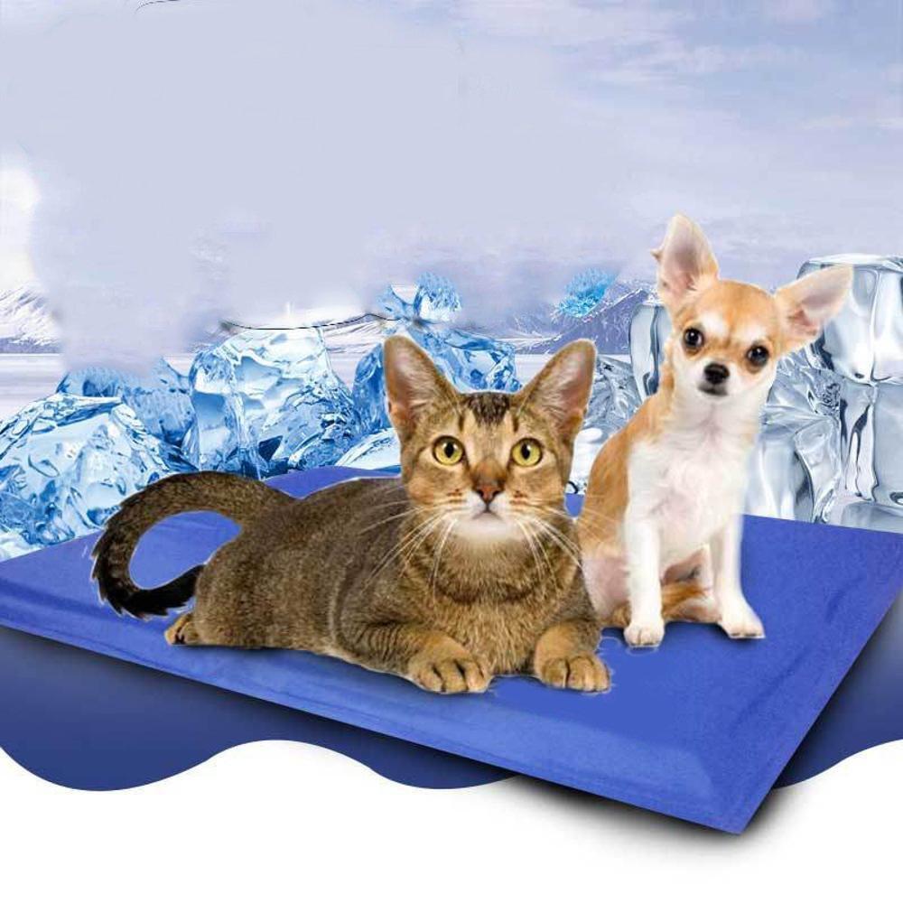 Dixinla - Cojín de Gel para Cama de Perro, para Mascotas, Ideal para disipar el Calor en Verano: Amazon.es: Jardín