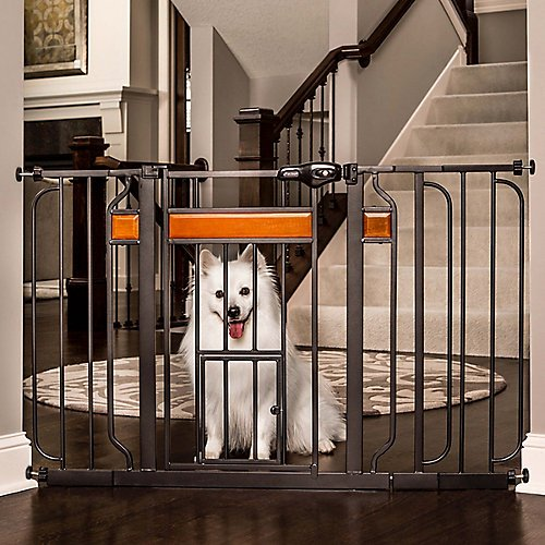 Carlson Home Design Extra Wide Walk Thru Pet Gate with Small Pet Door, Includes Décor Hardwood, 4-Inch Extension Kit, 4-Inch Extension Kit, 4 Pack of Pressure Mount Kit and 4 Pack of Wall Mount Kit ()