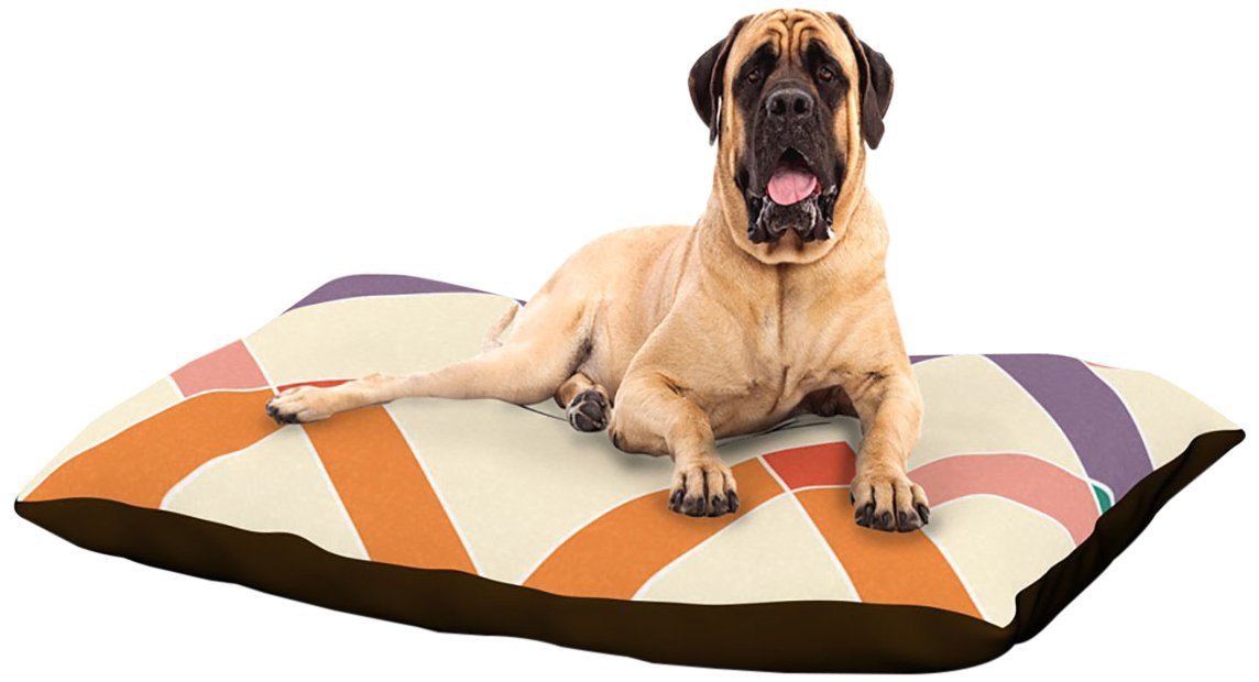X-Large 40\ Kess InHouse Gizmo  colorful Geometry Name Fleece Dog Bed, 30 by 40-Inch, Rainbow Tan