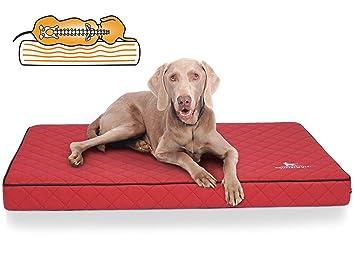 Knuffelwuff Alfombra ortopédico para Perro, cojín ortopédico Juna, sintética surpiqué AU láser, Rojo 78 x 65 x 10 cm: Amazon.es: Productos para mascotas