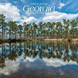 Georgia, Wild & Scenic 2019 12 x 12 Inch Monthly Square Wall Calendar, USA United States of America Southeast State Nature (Multilingual Edition)
