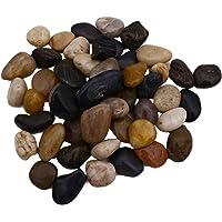 Shindel Jardín de Piedra de Playa, Piedras Naturales Decorativas de río Roca Piedras para decoración del hogar y Manualidades Proyecto Jarrón de Relleno, 2,2 LB