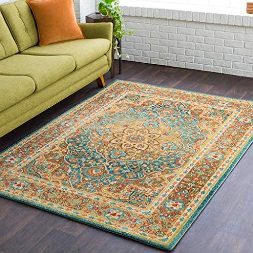 Nottoway Traditional Medallion Persian 5'3
