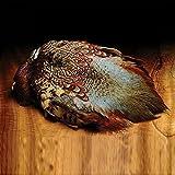 Hareline Dubbin Ringneck Pheasant Cock Skin