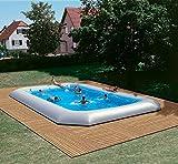 Zodiac Hippo Original Rectangular Pool 16.55m x 8.25m