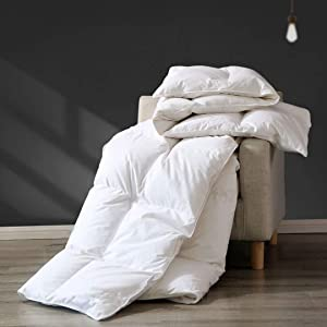 APSMILE Premium All Seasons Goose Down Comforter Queen - 100% Organic Cotton, 45 Oz 650FP Medium Warmth Hypoallergenic Quilted Duvet Insert (90x90 Inches, White)
