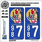 2 Stickers de plaque d'immatriculation auto 987 Poupée Hinano - Armoiries