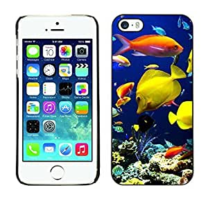 New Fashion Case BLOKK case cover / Apple iphone 5c / underwater coral reef diving scuba fish / Slim Black Plastic case cover ObCKS0AI1t3 case cover Armor