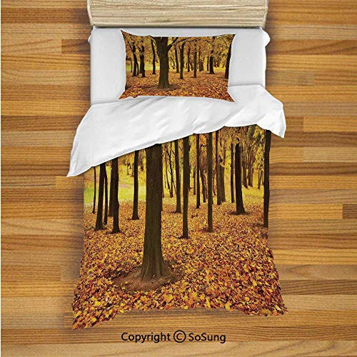 SoSung Landscape Kids Duvet Cover Set Twin Size, Golden Fallen Leaves Covered Ground Autumn Forest Nature Picture 2 Piece Bedding Set with 1 Pillow Sham,Amber Brown and Yellow