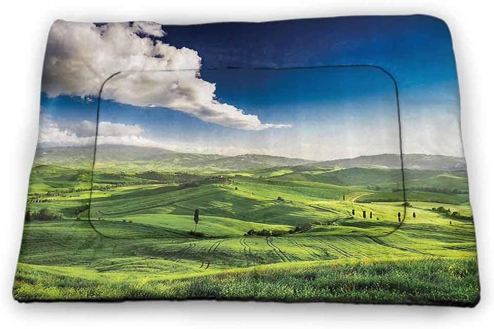 carmaxs Large Dog Food Mat Nature Landscape Decor Collection Bite-Resistant View of Valley at Magical Sunset Country Road Rural Path Italian Romantic Deco 40 x 27 inch Green Blue
