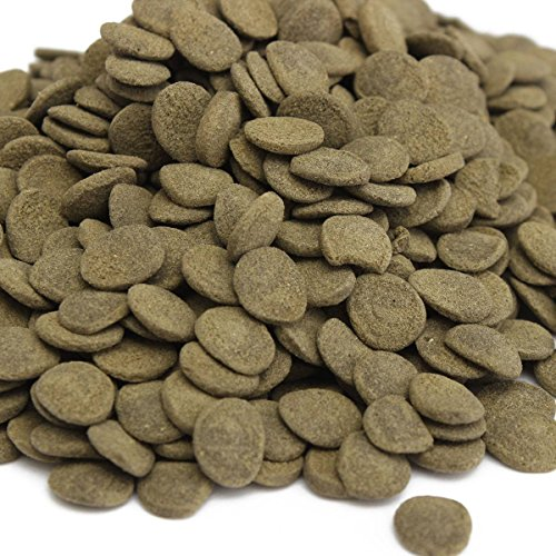 (FOCUSPET Spirulina Veggie Algae Wafers Catfish Tropical Bulk Fish Food, 0.5lbs)