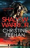 Shadow Warrior (The Shadow Series)