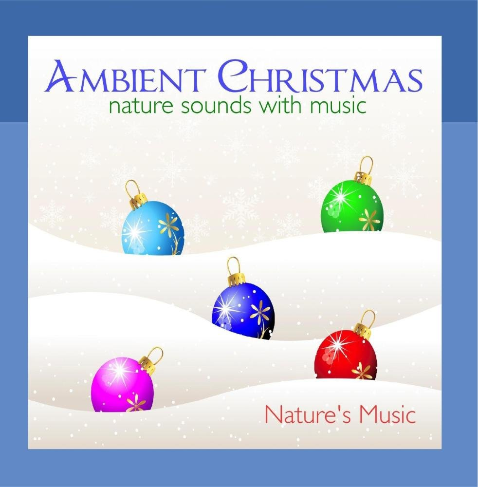 Ambient Christmas Nature Sounds with Music