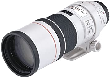 Canon EF 300mm f/4.0L is USM Prime Lens for Canon Digital SLR Camera Camera Lenses at amazon