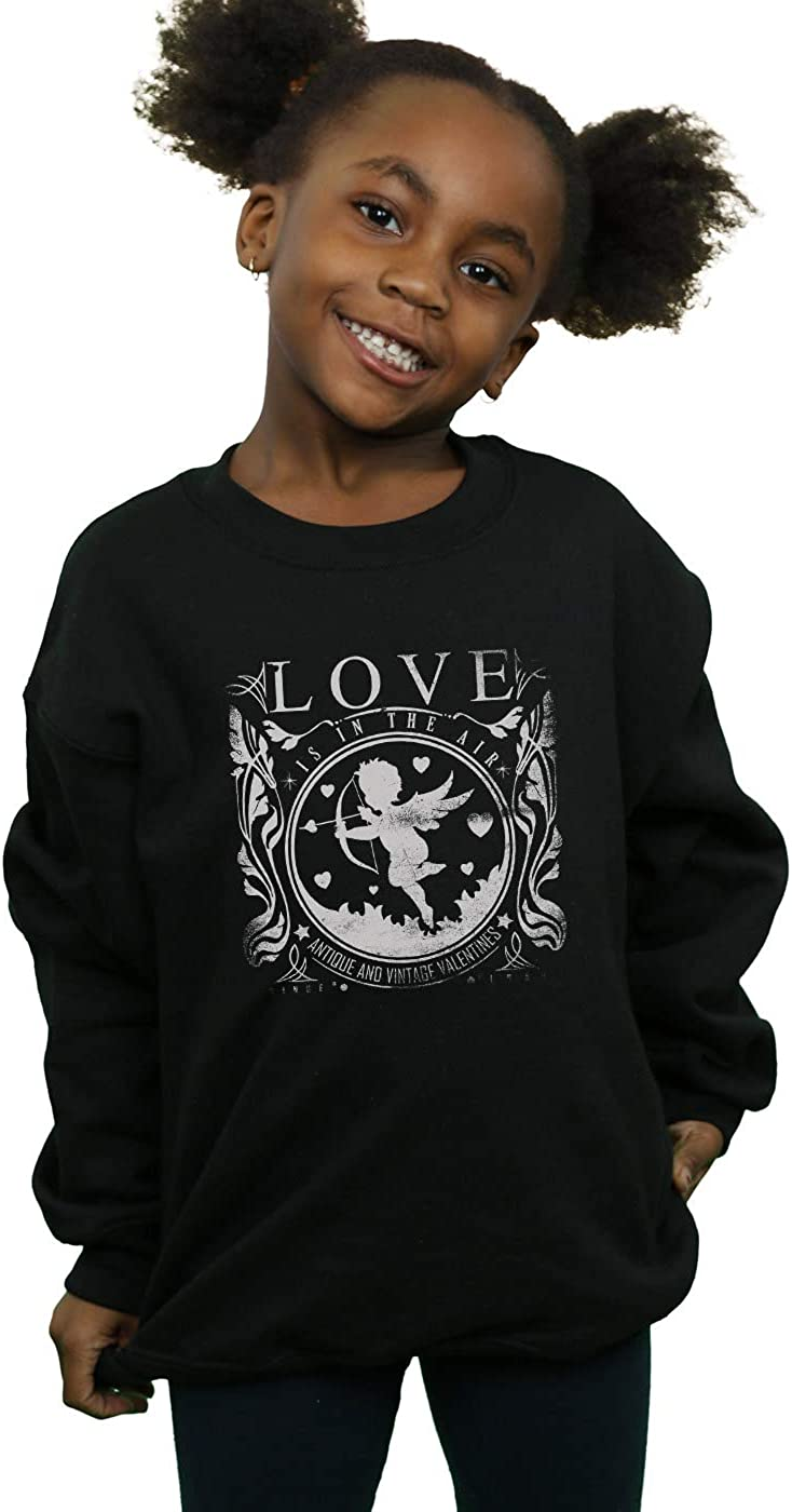 Drewbacca Girls Love is in The Air Sweatshirt