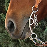 Professional S Choice Derby Chain Mouth Bit