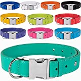 "CollarDirect Leather Dog Collar, Metal Buckle Soft Genuine Colorful Pet Collars for Dogs Puppy Small Medium Large Black Red Pink Blue Green Orange (Neck Fit 10""-11"", Navy Blue)"